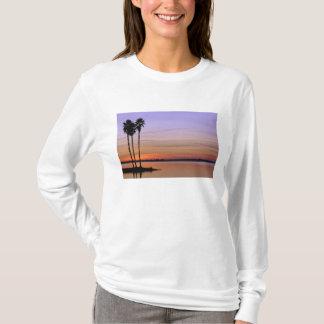 North America, USA, Florida, Mt. Dora, a trio T-Shirt
