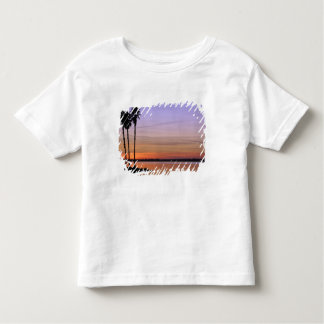 North America, USA, Florida, Mt. Dora, a trio Toddler T-Shirt