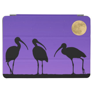 North America, USA, Florida, Mt. Dora, iPad Air Cover