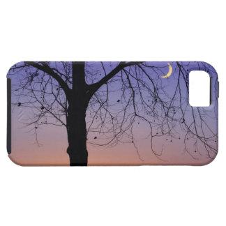 North America, USA, Florida, Mt. Dora, the Tough iPhone 5 Case
