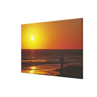 North America, USA, Florida, Sanibel Island. Stretched Canvas Print