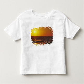 North America, USA, Florida, Sanibel Island. Toddler T-Shirt