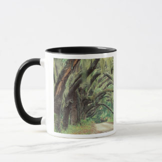 North America, USA, Georgia, Cumberland 2 Mug