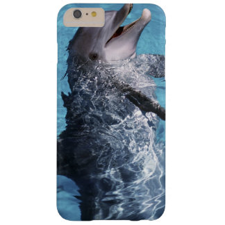North America, USA, Hawaii. Dolphin 2 Barely There iPhone 6 Plus Case
