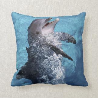 North America, USA, Hawaii. Dolphin 2 Cushion