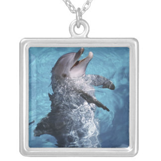 North America, USA, Hawaii. Dolphin 2 Silver Plated Necklace