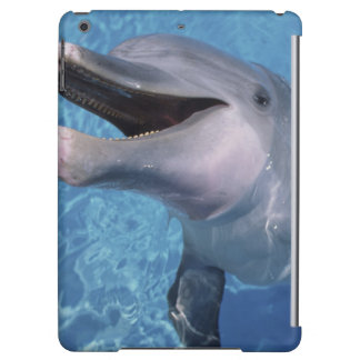 North America, USA, Hawaii. Dolphin 3