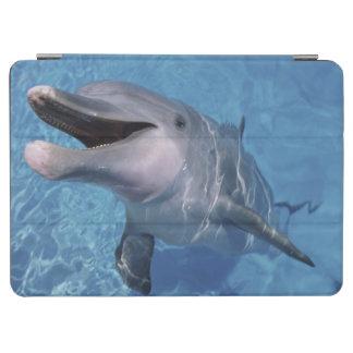 North America, USA, Hawaii. Dolphin 3 iPad Air Cover