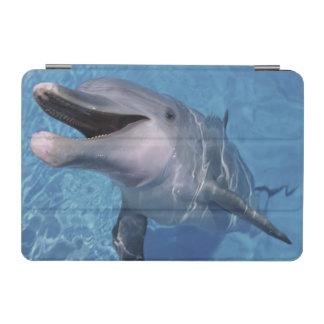 North America, USA, Hawaii. Dolphin 3 iPad Mini Cover