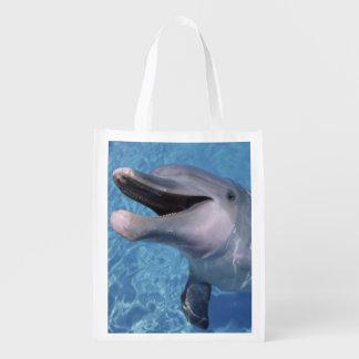 North America, USA, Hawaii. Dolphin 3 Reusable Grocery Bag