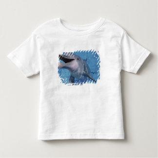 North America, USA, Hawaii. Dolphin 3 Toddler T-Shirt