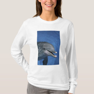 North America, USA, Hawaii. Dolphin T-Shirt