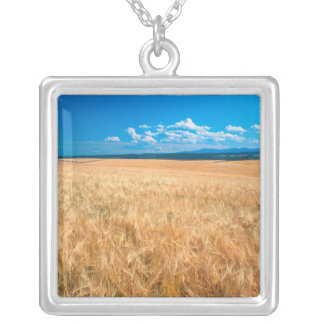 North America, USA, Idaho. Barley field in Silver Plated Necklace