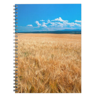 North America, USA, Idaho. Barley field in Spiral Notebook