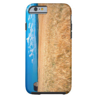 North America, USA, Idaho. Barley field in Tough iPhone 6 Case