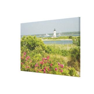 North America, USA, Massachusetts, Martha's Gallery Wrapped Canvas