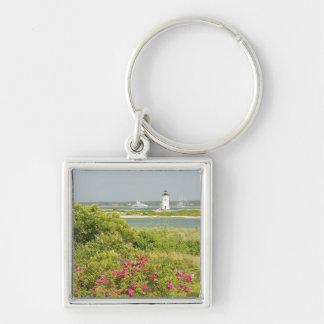 North America, USA, Massachusetts, Martha's Key Ring
