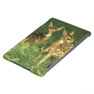 North America, USA, Minnesota. White-tailed 2 iPad Air Case