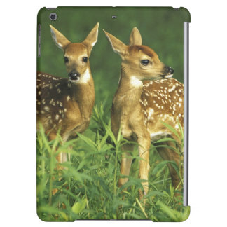 North America, USA, Minnesota. White-tailed 2 Case For iPad Air
