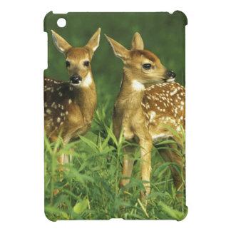 North America, USA, Minnesota. White-tailed 2 iPad Mini Cases