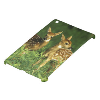 North America, USA, Minnesota. White-tailed 2 iPad Mini Cover