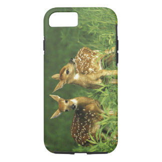 North America, USA, Minnesota. White-tailed 2 iPhone 8/7 Case