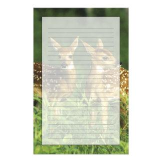North America, USA, Minnesota. White-tailed 2 Personalized Stationery