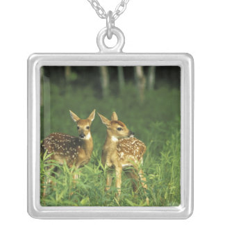 North America, USA, Minnesota. White-tailed 2 Silver Plated Necklace
