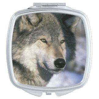 North America USA Minnesota Wolf Canis 3 Travel Mirrors