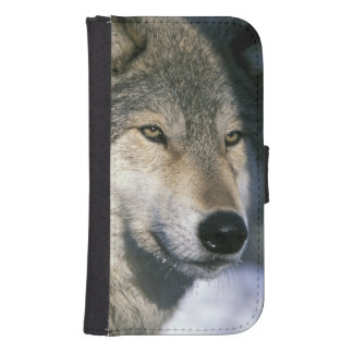 North America, USA, Minnesota. Wolf Canis 3 Samsung S4 Wallet Case
