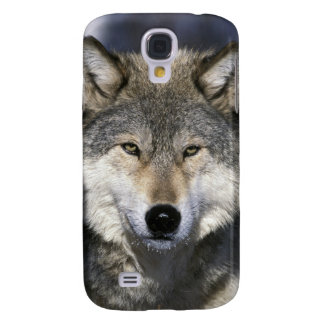 North America, USA, Minnesota. Wolf Canis Galaxy S4 Case