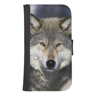 North America, USA, Minnesota. Wolf Canis Samsung S4 Wallet Case