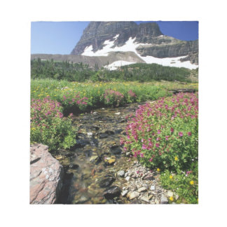 North America, USA, Montana, Glacier National 3 Notepad