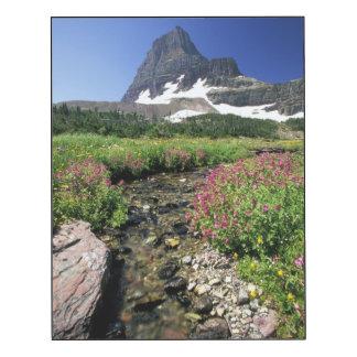 North America, USA, Montana, Glacier National 3
