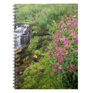 North America, USA, Montana, Glacier National 4 Notebook