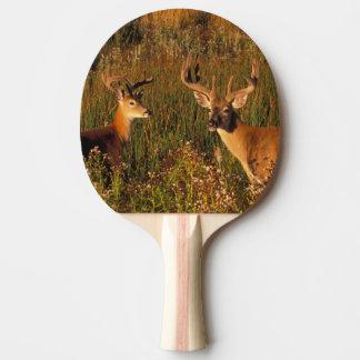 North America, USA, Montana, National Bison Ping Pong Paddle