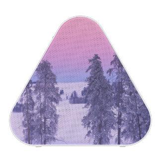 North America, USA, Montana, Yellowstone
