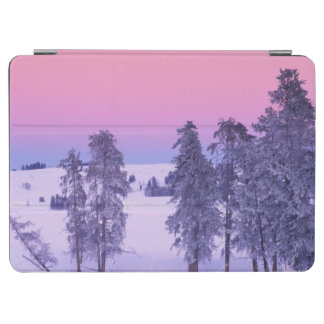 North America, USA, Montana, Yellowstone iPad Air Cover