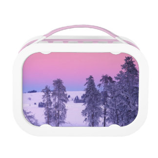 North America, USA, Montana, Yellowstone Lunch Box
