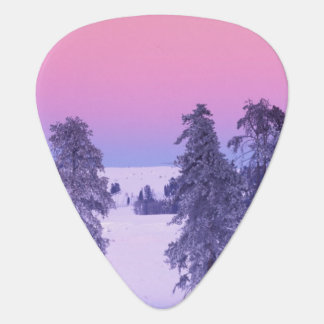 North America, USA, Montana, Yellowstone Plectrum