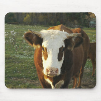North America USA New Hampshire A bull on Mouse Pad
