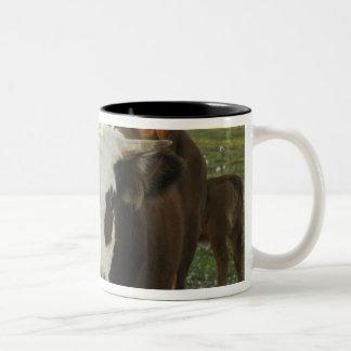North America, USA, New Hampshire. A bull on Mug