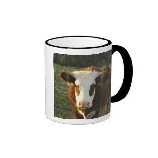 North America USA New Hampshire A bull on Coffee Mugs