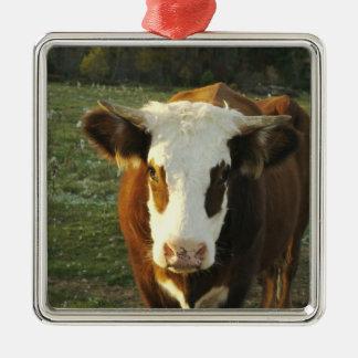 North America, USA, New Hampshire. A bull on Silver-Colored Square Decoration