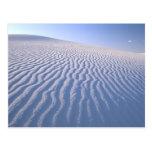 North America, USA, New Mexico, White Sand Dunes Postcard