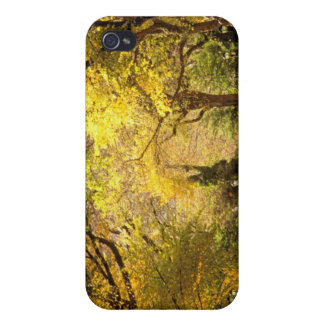 North America, USA, New York, New York City. 12 Case For The iPhone 4
