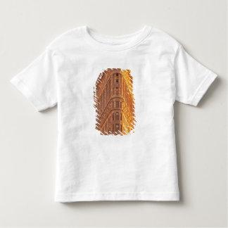 North America, USA, New York, New York City. 5 Toddler T-Shirt