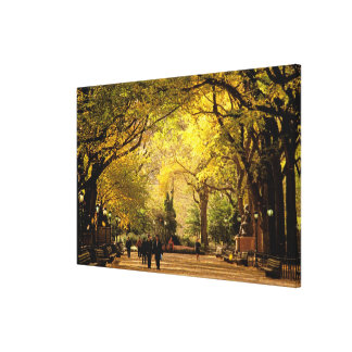 North America, USA, New York, New York City. 6 Gallery Wrap Canvas