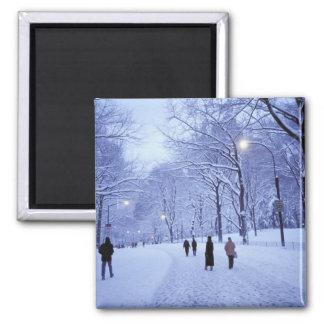 North America, USA, New York, New York City. 8 Square Magnet