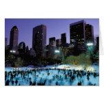North America, USA, New York, New York City. 9 Greeting Card